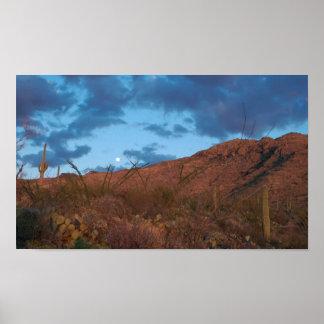 Salida de la luna de la puesta del sol del Saguaro Impresiones