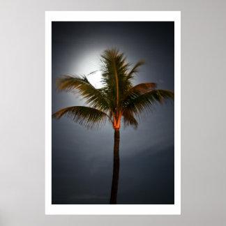 Salida de la luna en la palma poster