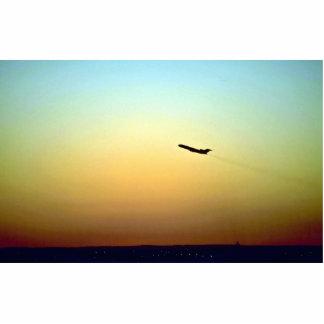 Salida de la puesta del sol fotoescultura vertical