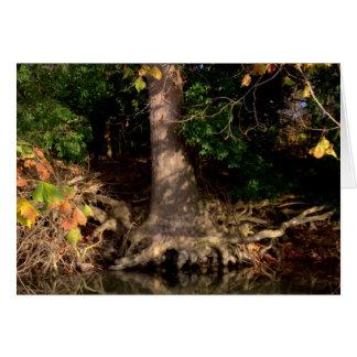 Salida del sol #8 del otoño tarjeta