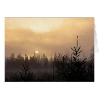 Salida del sol a través de la niebla tarjeta de felicitación