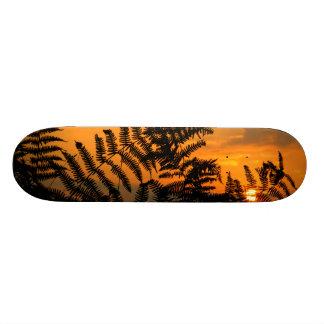 Salida del sol a través de los helechos tabla de patinar