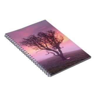 Salida del sol brumosa y cuaderno solitario del ár