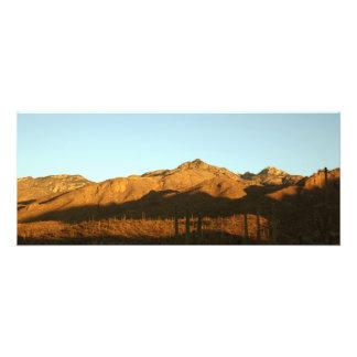Salida del sol de Arizona Cojinete