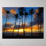 Salida del sol de Kauai Posters