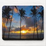 Salida del sol de Kauai Tapetes De Ratones