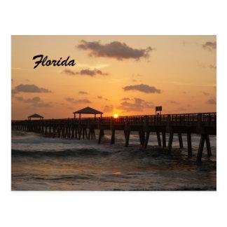 Salida del sol de la Florida Tarjetas Postales