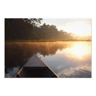 Salida del sol de la selva tropical del Amazonas Arte Con Fotos