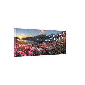 Salida del sol de los lagos Marie - rastro de John Impresión En Lienzo