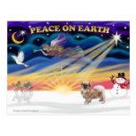 Salida del sol de Navidad - perro de aguas tibetan Tarjetas Postales