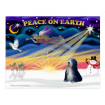 Salida del sol de Navidad - Terrier tibetano (BW) Tarjetas Postales