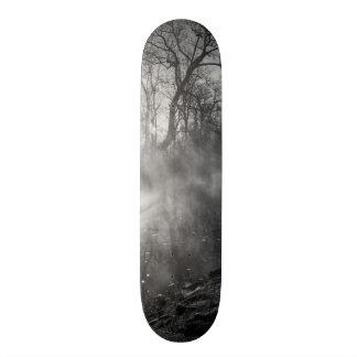 Salida del sol de niebla de la mañana del río patin
