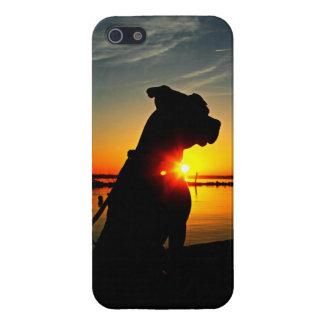 Salida del sol de Pitbull iPhone 5 Protectores