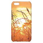 Salida del sol de Tejas - caso del iPhone 4