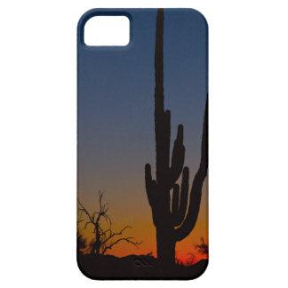 Salida del sol del desierto de Sonoran iPhone 5 Carcasas