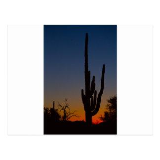 Salida del sol del desierto de Sonoran Tarjeta Postal