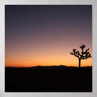 Salida del sol del desierto póster