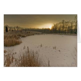 Salida del sol del invierno de Gorman Tarjeta Pequeña