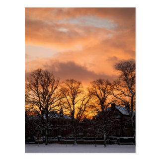 Salida del sol del invierno postales
