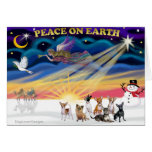 Salida del sol del navidad - chihuahuas (siete) tarjeton