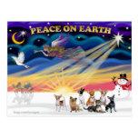 Salida del sol del navidad - chihuahuas (siete) tarjeta postal