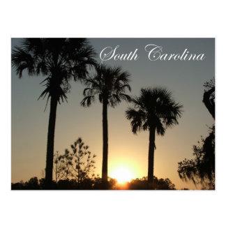 Salida del sol del Palmetto de Carolina del Sur Tarjeta Postal
