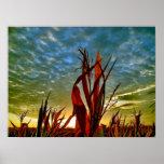 Salida del sol en el campo de maíz posters