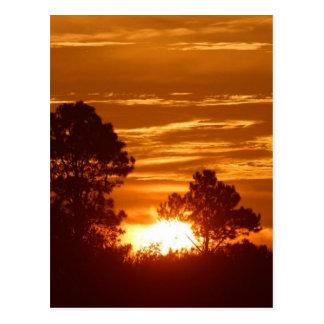 Salida del sol en Luisiana Postal