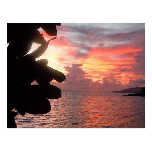 Salida del sol en >Postcard de la isla de South Tarjetas Postales