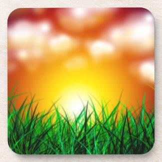 Salida del sol hermosa sobre un campo de la hierba posavaso