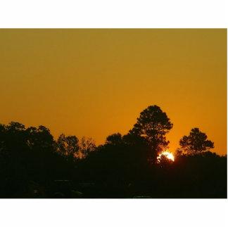 Salida del sol Luisiana Fotoescultura Vertical