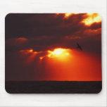 Salida del sol Mousepad de la gaviota Tapete De Ratón