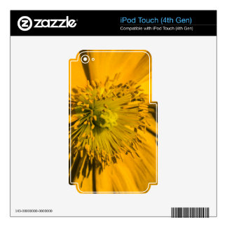 Salida del sol Popper Skins Para iPod Touch 4G