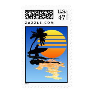 Salida del sol que practica surf sellos