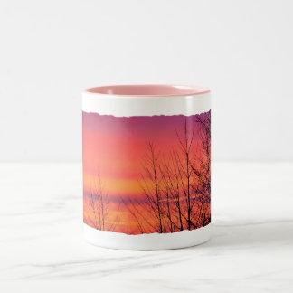 Salida del sol rosada una taza fina de la mañana