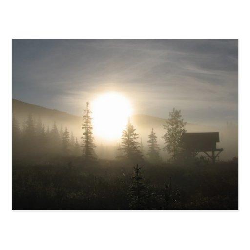 Salida del sol septentrional postales