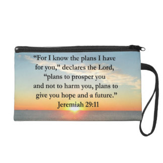 SALIDA DEL SOL SERENA DEL 29:11 DE JEREMIAH