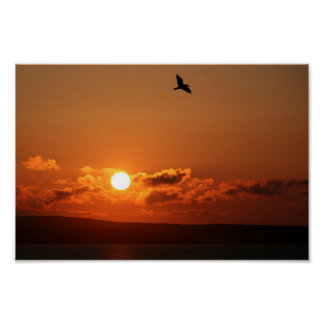 salida del sol sobre el lagarto, Cornualles del in Posters