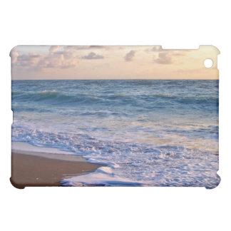 Salida del sol sobre la playa de la Florida incli