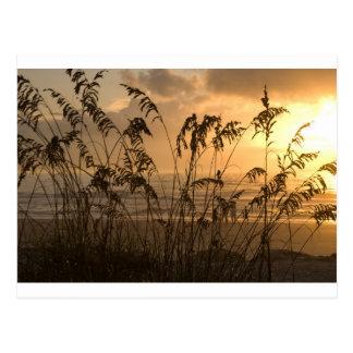 Salida del sol tarjeta postal