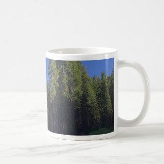 Salida del sol verde de los árboles de los prados  taza de café
