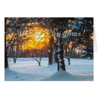 Salida del sol y tarjeta de Navidad de la nieve