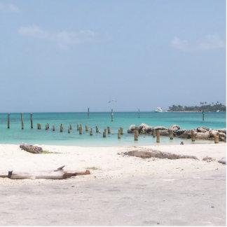 Salidas del corte de la playa de Bahamas Fotoescultura Vertical
