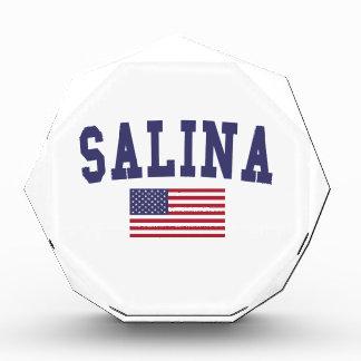 Salina US Flag Acrylic Award