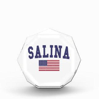 Salina US Flag Award