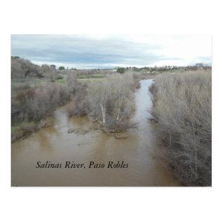 Salinas River North of Veterans Memorial Bridge Postcard