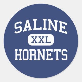 Saline Hornets Middle School Saline Michigan Classic Round Sticker