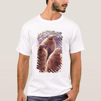 Salisbury Plain, South Georgia: Juvenile King T-Shirt