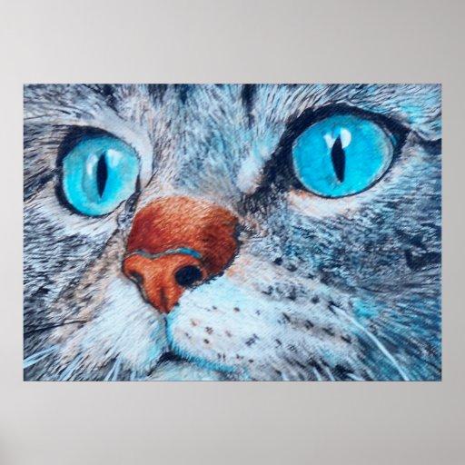 Sally el gato observado azul posters