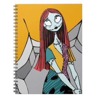 Sally in Spider Web Notebooks